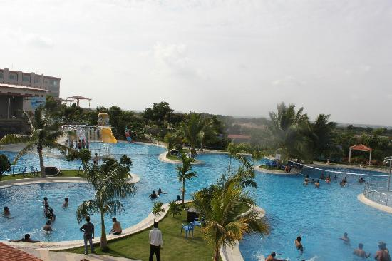 Leonia Holistic Destination: pool at leonia