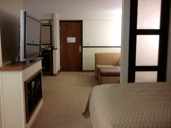 Hyatt Place Itasca: my room at Hyatt Place