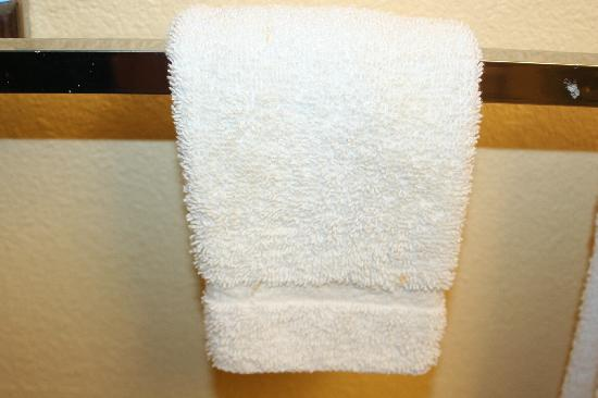 Quality Inn & Suites: DirtyTowels
