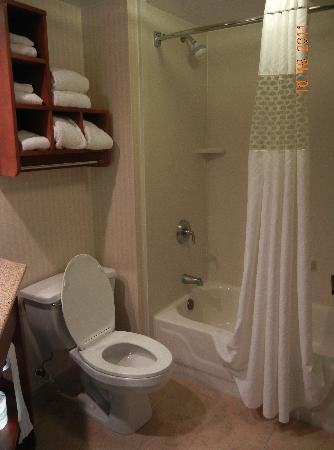 Hampton Inn Washington : Clean bathroom
