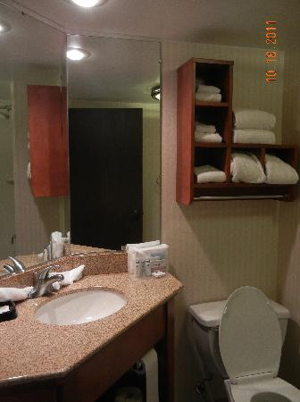 Hampton Inn Washington : Bathroom