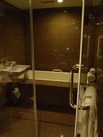 Amazing Walk In Shower Tub Picture Of Crowne Plaza