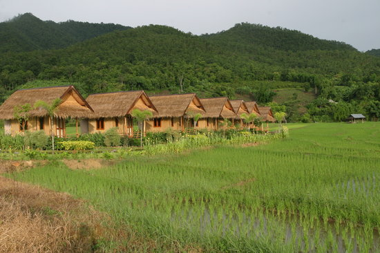 Photo of Pai Klang Na Resort