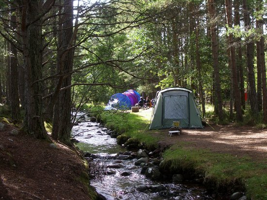 Rothiemurchus Camp and Caravan