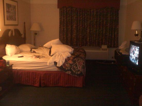 La Quinta Inn & Suites Omaha Airport - Carter Lake: Dark and dingy rooms