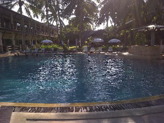 Phangan Bayshore Resort: pool