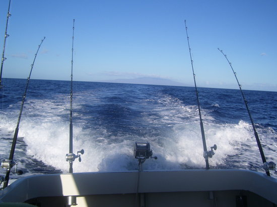 Update attraction details for Maui sport fishing