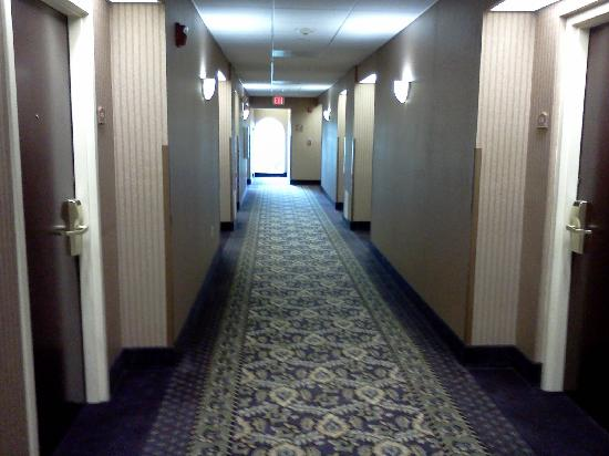 Comfort Inn &amp; Suites Jupiter: Clean hallway
