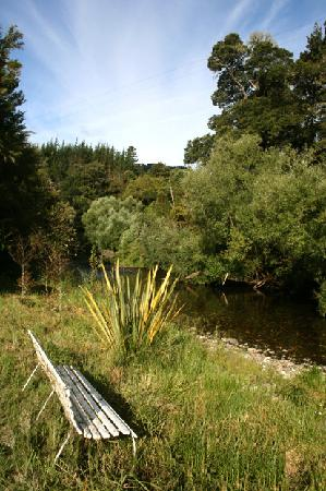 Foley's Creek: The Riwaka river runs along the property - a great spot for a swim and a picnic!