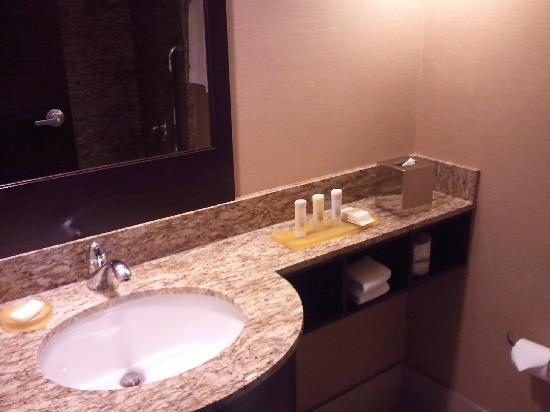Crowne Plaza Glen Ellyn Lombard: Bathroom vanity