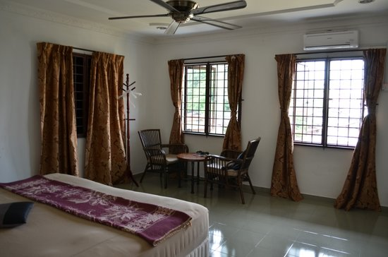 Oriental Riverside Residence Guest House: Room facing the river