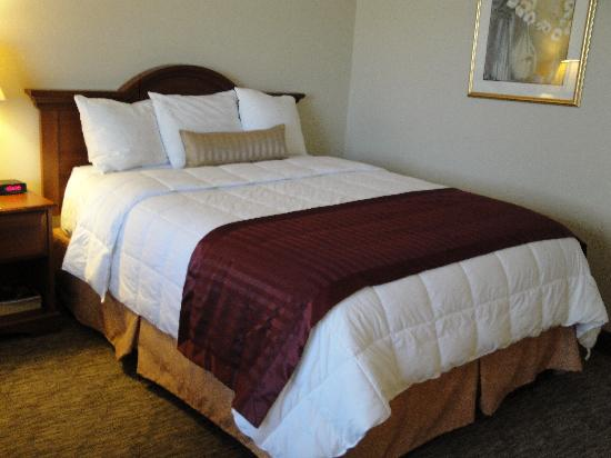Quality Inn & Suites : new bedding