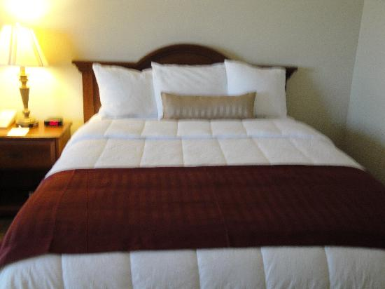 Quality Inn & Suites : upgraded room