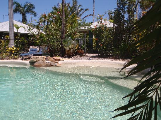 Mission Beach Shores: gorgeous swimming pool