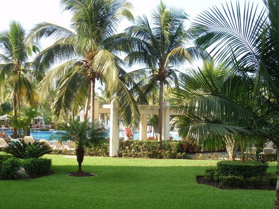 Riu Vallarta: the grounds are well maitained