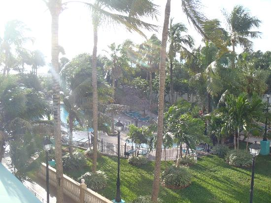 Riu Florida Beach: VIEW FROM THE ROOM
