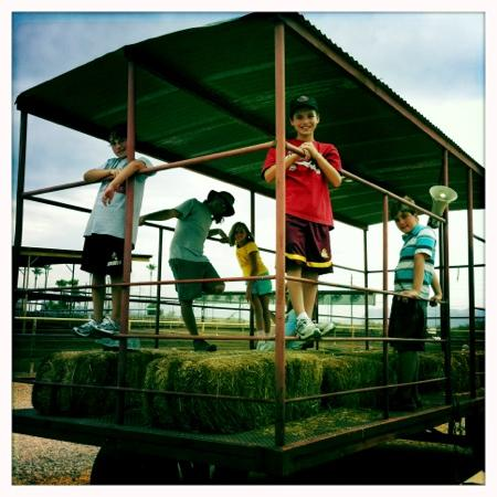 Superstition Farm : farm camps & hay rides