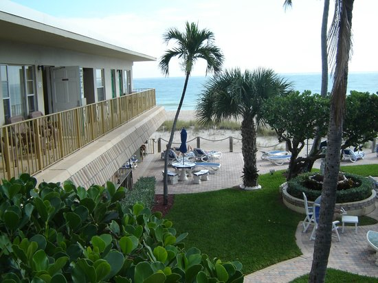 Tropic Seas Resort: View of one of the sunning areas