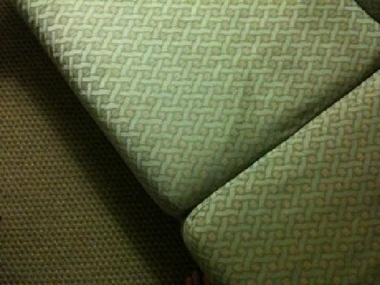 Comfort Suites at the World Golf Village: stains on couch