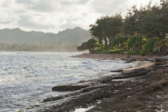 17 Palms Kauai: The beach within walking distance of the cotteges.
