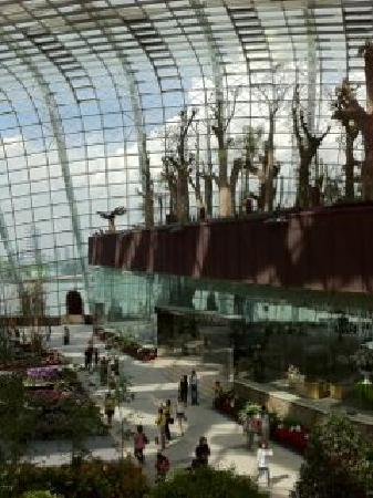 GARDENS BY THE BAY - Singapore - Reviews of GARDENS BY THE BAY ...