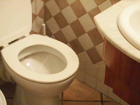 Hotel Delle Regioni: wc per lilliput