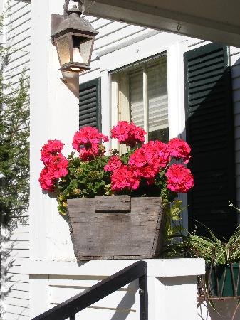 The Inn at Weston: Geraniums around the Inn
