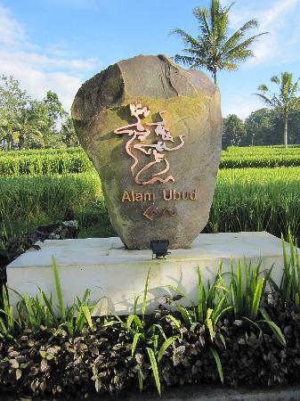 Images of Alam Ubud Culture Villas & Residences, Tegalalang