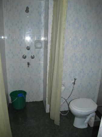 Bharatpur, Непал: Fully tiled bathroom with shower curtains
