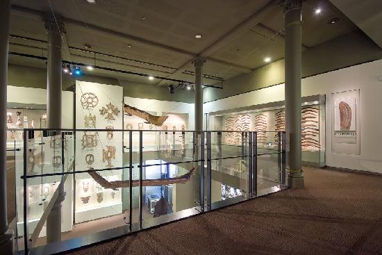 South australian biodiversity gallery picture of south for 227 north terrace adelaide