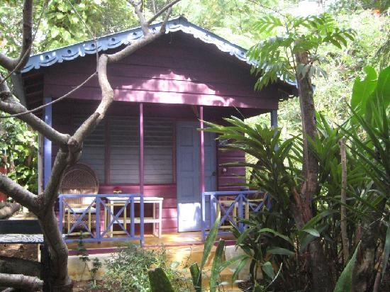 Photo of Banana's Garden Bed & Breakfast Negril