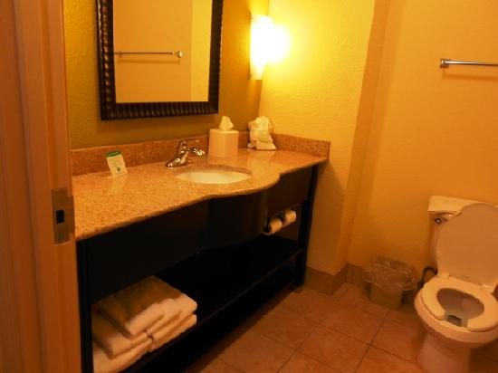 Holiday Inn Express Hotel & Suites Greenville: Bath