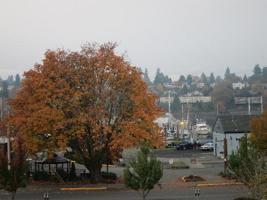 Phoenix Inn Suites Olympia: Beautiful day view