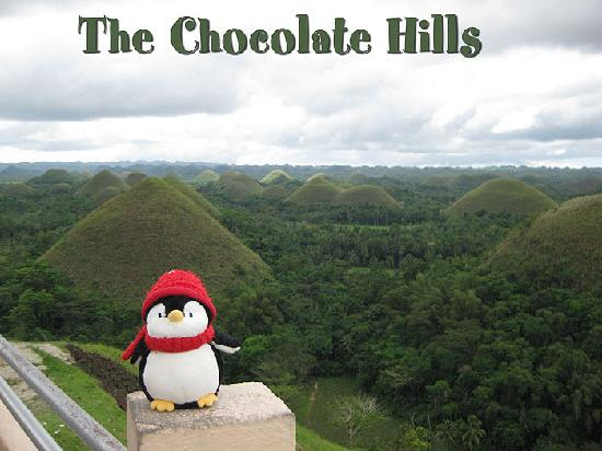 Bohol Beach Club: Chocolate Hills.