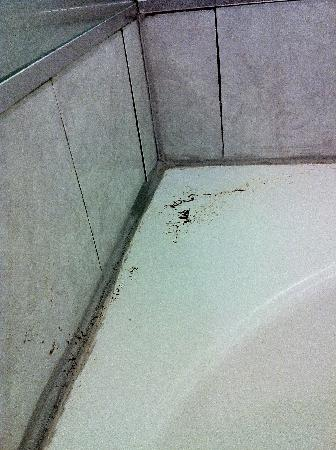 Howard Johnson Express Ruther Glen: Dirt on tub