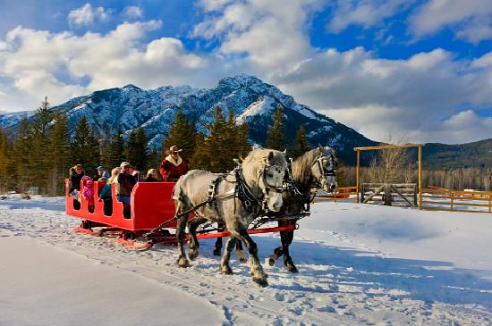 Banff, Canada: Sleigh Rides in the Park!