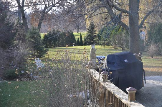 A ParkView Bed & Breakfast: The beautiful backyard leading to a public park beyond.
