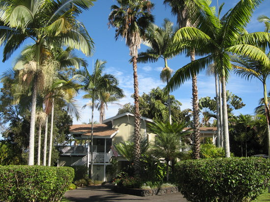 Areca Palms Estate Bed and Breakfast: Great Breakfast and Comfortable Beds