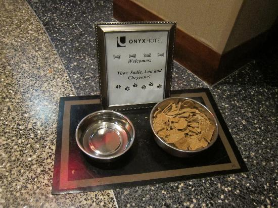 Onyx Hotel - a Kimpton Hotel: Pets are very welcome at the Onyx