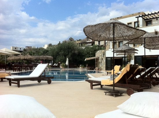 4reasons hotel+bistro: Poolside