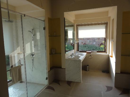 Tree of Life Resort & Spa, Jaipur: Bathroom