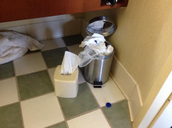Radisson Hotel Cleveland - Gateway: Just buy the rooms bigger garbage cans!