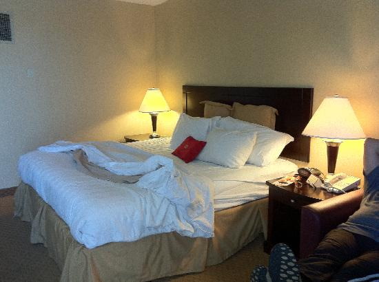 Crowne Plaza Hotel Cleveland City Centre: Bed