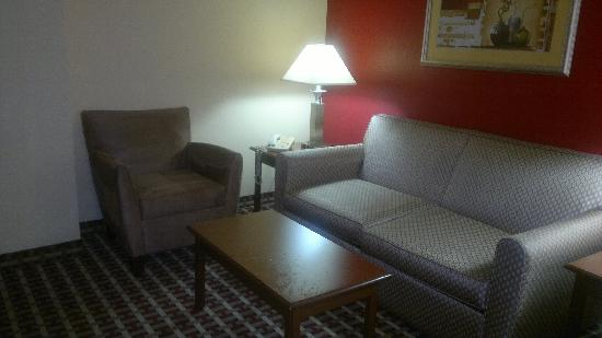 Holiday Inn Express Hotel & Suites Murray: Sofa