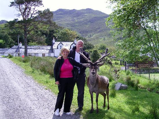 The Old Manse: our friend in corran near skye