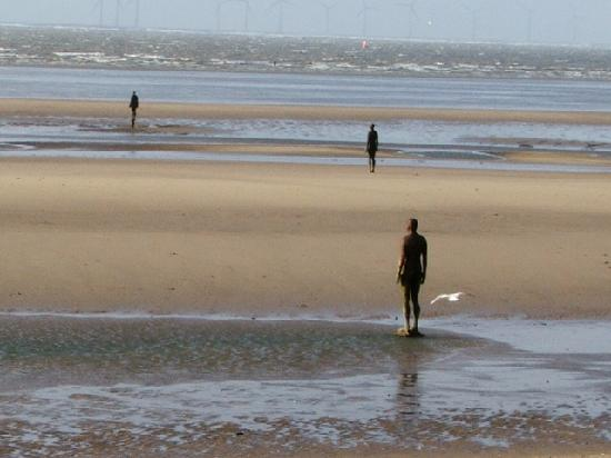 Gormley Crosby Beach Picture Of Antony Gormley S Another
