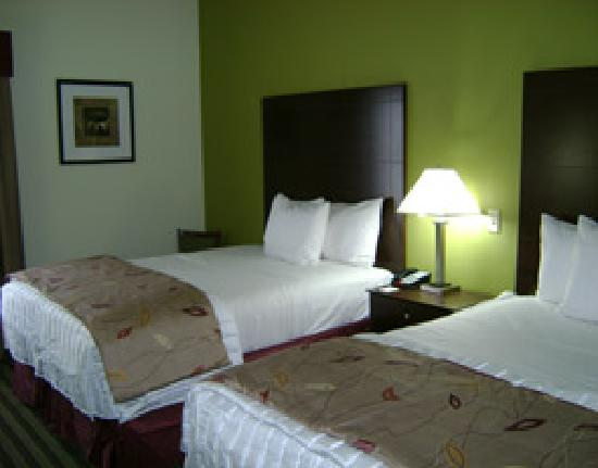 La Quinta Inn & Suites Denham Springs / Baton Rouge: Double Bed Guestroom
