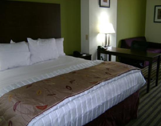 La Quinta Inn & Suites Denham Springs / Baton Rouge: Guestroom with king Bed