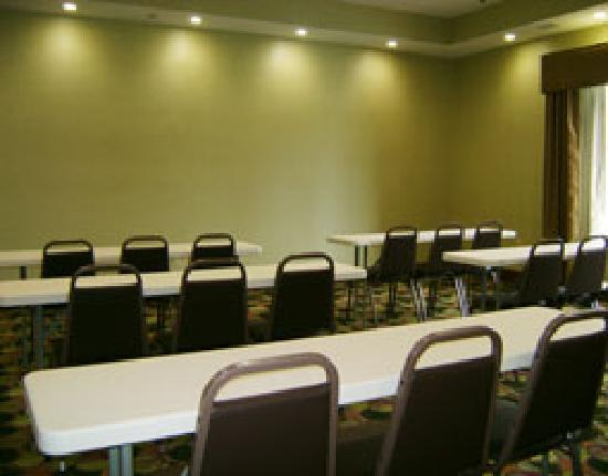 La Quinta Inn & Suites Denham Springs / Baton Rouge: Meeting Room