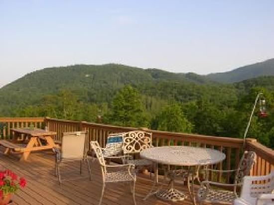 View from deck picture of mountain laurel bed for Tripadvisor asheville nc cabin rentals